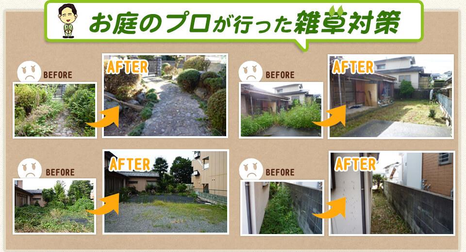 お庭のプロが行った雑草対策