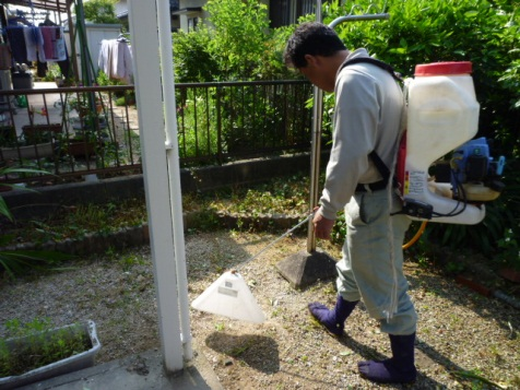 人、ペット、環境にやさしい除草剤