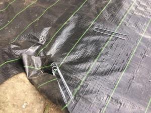 防草シート張り作業中
