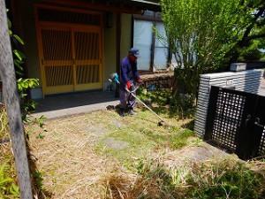 写真:玄関回りから庭まで草刈り